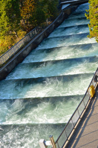 Bonneville Dam Fish Ladder