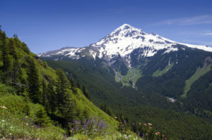 View from Bald Mountain, hiking on Mt. Hood