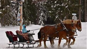 mt-hood-sleigh-rides-1